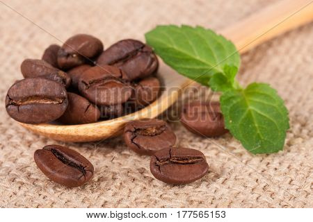 Coffee beans in a wooden scoop with green leaf on sackcloth.