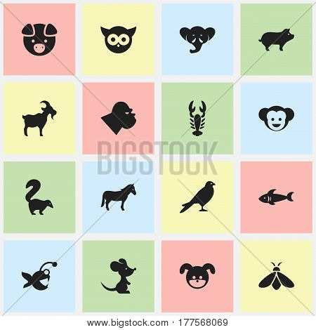 Set Of 16 Editable Zoo Icons. Includes Symbols Such As Hog, Baboon, Livestock And More. Can Be Used For Web, Mobile, UI And Infographic Design.