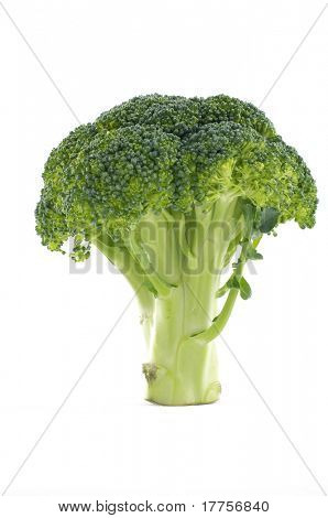 Green fresh raw broccoli healthy food