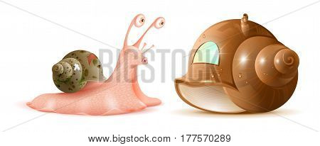 Cartoon snail looks at new shell of house. Buying property. Isolated on white vector illustration