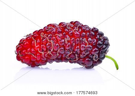 fresh mulberry isolated on the white background