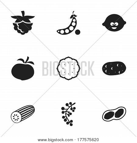 Set Of 9 Editable Cookware Icons. Includes Symbols Such As Cucumber, Tomato, Tater And More. Can Be Used For Web, Mobile, UI And Infographic Design.
