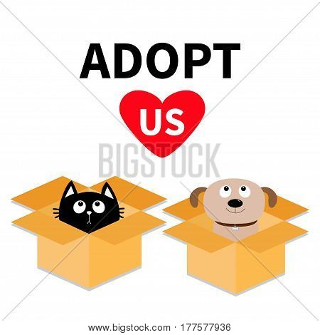 Adopt us. Dont buy. Dog Cat inside opened cardboard package box. Pet adoption. Puppy pooch kitten cat looking up to red heart. Flat design Help homeless animal concept White background Isolated Vector