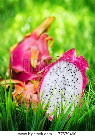 Ripe Dragon Fruit On Green Grass