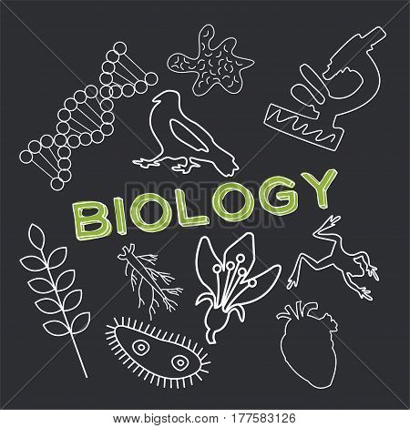Biology and vector character set. Botany, genetics, anatomy, etc