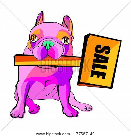Dog vector breed cute pet animal bulldog french. Sale poster. Discount vector. Discount label. Discount coupon.