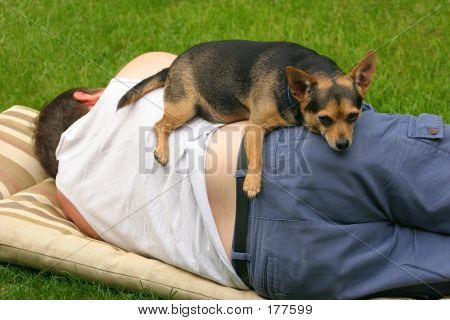 man and dog relaxing together poster