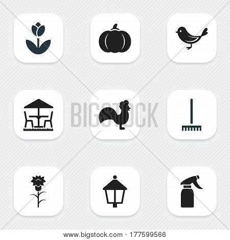Set Of 9 Editable Plant Icons. Includes Symbols Such As Beauty Flower, Garden Seat, Gourd And More. Can Be Used For Web, Mobile, UI And Infographic Design.