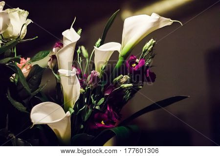 Elegant bouquet of white Calla lilies and purple Eustoma flowers. Toned image.