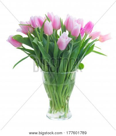 Bouquet of fresh pink tulips in glass vase isolated on white background