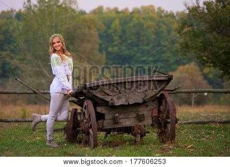 Woman  And Cart Horse