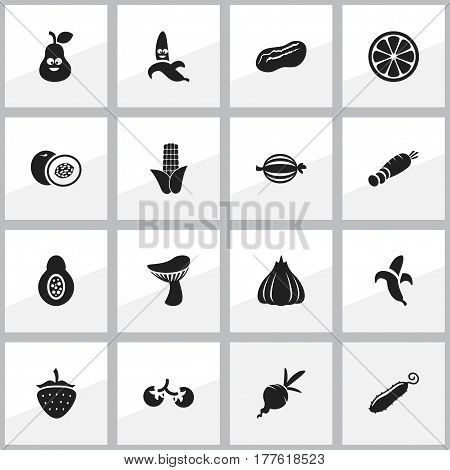 Set Of 16 Editable Vegetable Icons. Includes Symbols Such As Nectarine, Zucchini, Maize And More. Can Be Used For Web, Mobile, UI And Infographic Design.