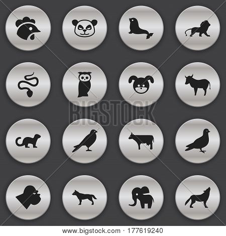 Set Of 16 Editable Zoo Icons. Includes Symbols Such As Pigeon, Wildcat, Eagle And More. Can Be Used For Web, Mobile, UI And Infographic Design.