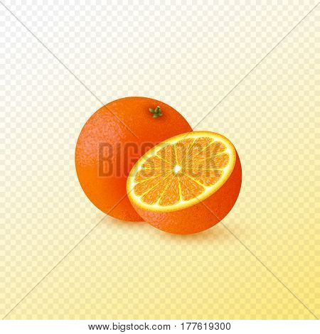 Realistic half cut and whole orange. Isolated on transparent background. Vector illustration.