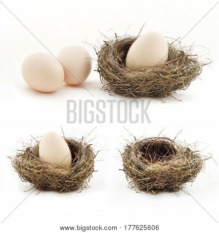 Composition with empty nest and big eggs inside the small nests isolated on white