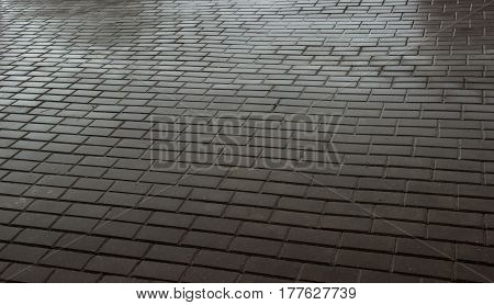 Wet Paving Stones. Paving Slab Wet Texture