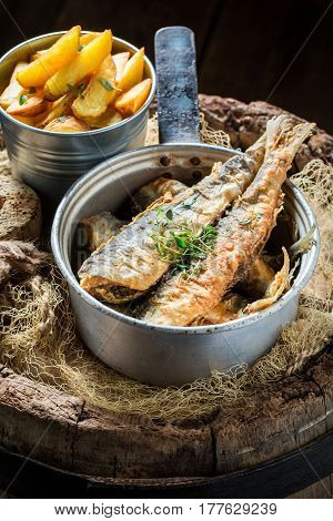 Delicious Roasted Herring Fish With Herbs And Salt