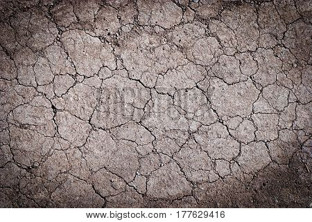 Beautiful grunge background - cracked ground. Water scarcity