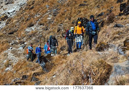 Diverse Group of Hikers male and female young and mature walking on Mountain Trail with mixed grassy and rocky terrain carrying backpacks and using trekking sticks.