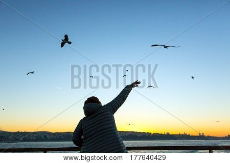 Bright Sunrise at Istanbul City Harbour and Silhouette of Person raising and waving with Hand welcoming Sea Gulls
