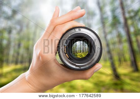 photography view camera photographer lens forest trees lense