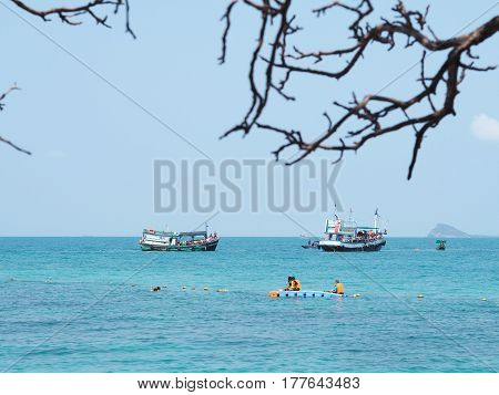 Look at passenger ships floating on the sea and tourist snorkleing through dry branches on the beach