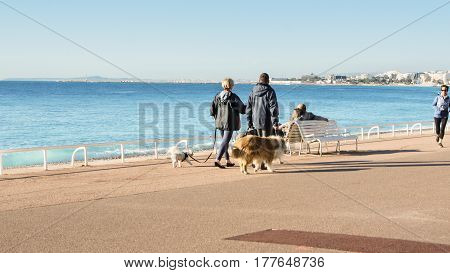 Nice, France - 25 February, People walking dogs, 25 February, 2017. People and tourists having a rest on the Cote d'Azur.