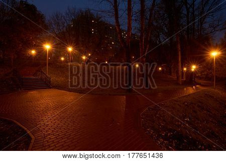 Night in the park and street lights with star filter effect. Park near Yauza river in Babushkinskiy district Moscow.