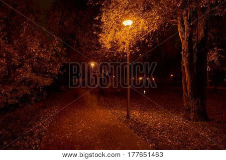 Night in the park and street lights. Park near Yauza river in Babushkinskiy district Moscow. Person walks on pathway as a phantom.