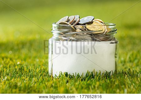 Plant growing in coins glass jar for money against green grass. Saving and investment financial concept