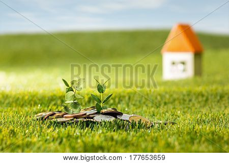Plant growing in coins glass jar for money against green grass. Saving and investment financial concept for new house