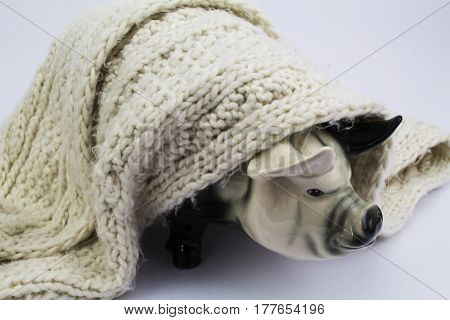 A cermaic pig wrapped in a blanket