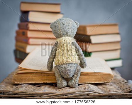 teddy bear reading a book in the library