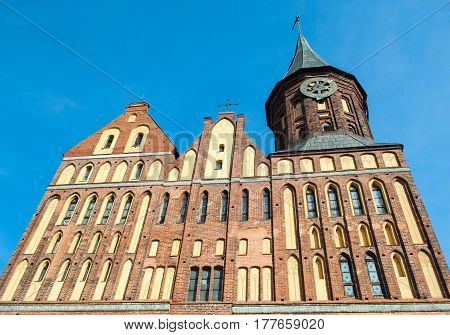 Brick Gothic style Cathedral in Kaliningrad Russia. It was formerly old German Konigsberg Cathedral. Color horizontal photo view from the bottom up