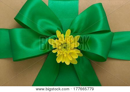 Gift Box With Green Bow And Yellow Chrysanthemum Flower