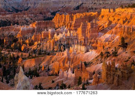 Bryce Canyon National Park From Sunrise Point In Early Morning Light, Utah, Usa