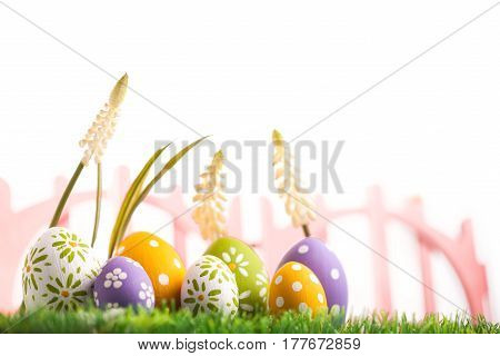 Colorful eggs and green grass on white background