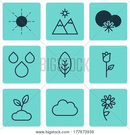 Set Of 9 Harmony Icons. Includes Plant, Landscape, Cold Climate Symbols. Beautiful Design Elements.