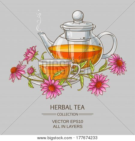 cup or echinacea tea and teapot  on color background