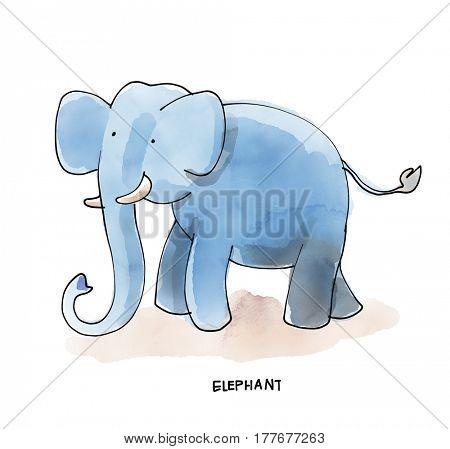 Elephant Watecolor Animal illustration set
