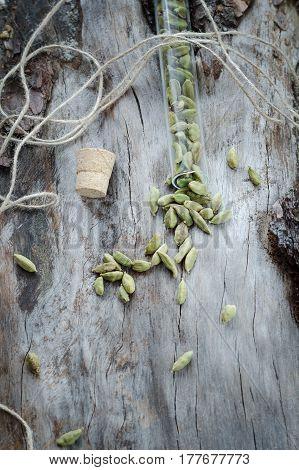 Dry Aroma Cardamon On Aged Pine. Grunge