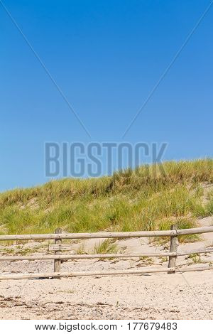 Beach And Dunes With Beachgrass