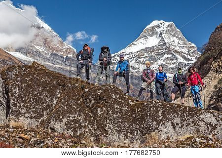 Diverse Group of Hikers male and female young and mature staying on Rock holding Backpacks and walking Sticks Mountain Valley and high snowy Peaks on Background.