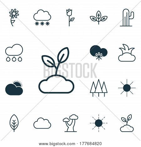 Set Of 16 Landscape Icons. Includes Plant, Cloud, Sun And Other Symbols. Beautiful Design Elements.