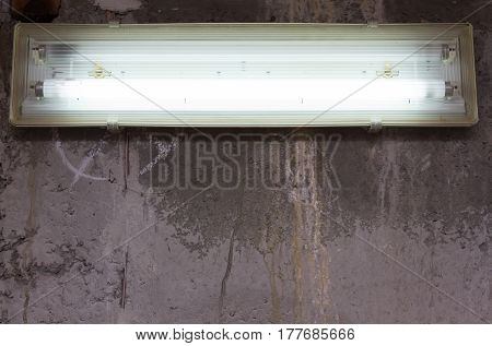 A fluorescent lamp hangs in the basement