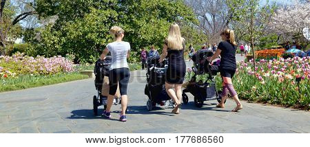 Dallas Texas - March 22 2017 Young Millennials friends with babies out for a Spring day walk in the park.