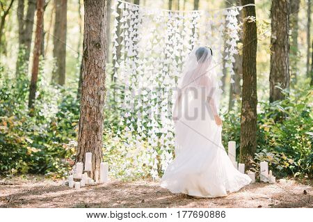 Portrait of a beautiful bride in a white wedding dress and veil outdoors. Fine art wedding. Wedding decor in a forest.
