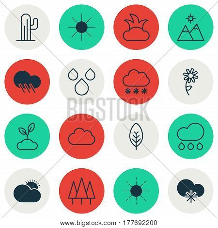 Set Of 16 Nature Icons. Includes Plant, Forest, Cloud And Other Symbols. Beautiful Design Elements.
