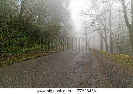 Remote road in Oregon Pacific Northwest forest in morning fog during winter