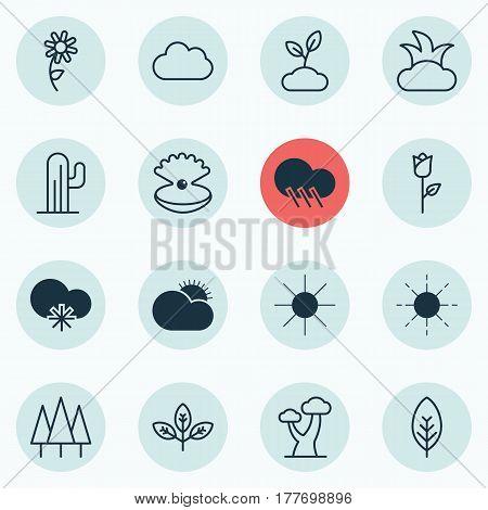 Set Of 16 Ecology Icons. Includes Plant, Bush, Raindrop And Other Symbols. Beautiful Design Elements.